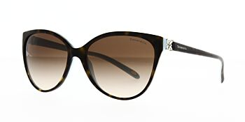 Tiffany & Co. Sunglasses TF4089B 81343B 58